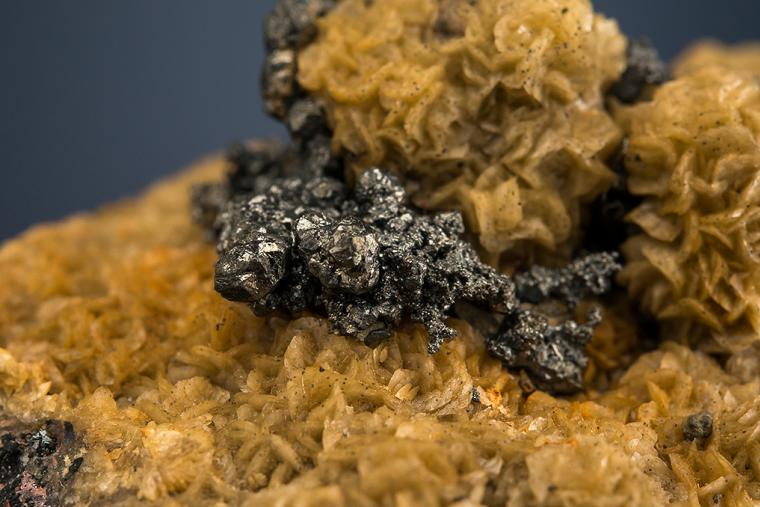 ACANTHITE on SIDERITE
