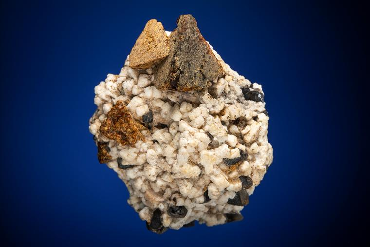 HELVITE and QUARTZ var. Smoky on ALBITE
