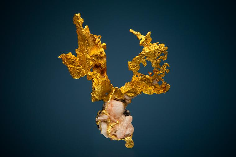 GOLD [0.5 ozt]